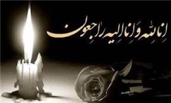 ناصر حسین پور و محمد خاوری با هم پرکشیدند !