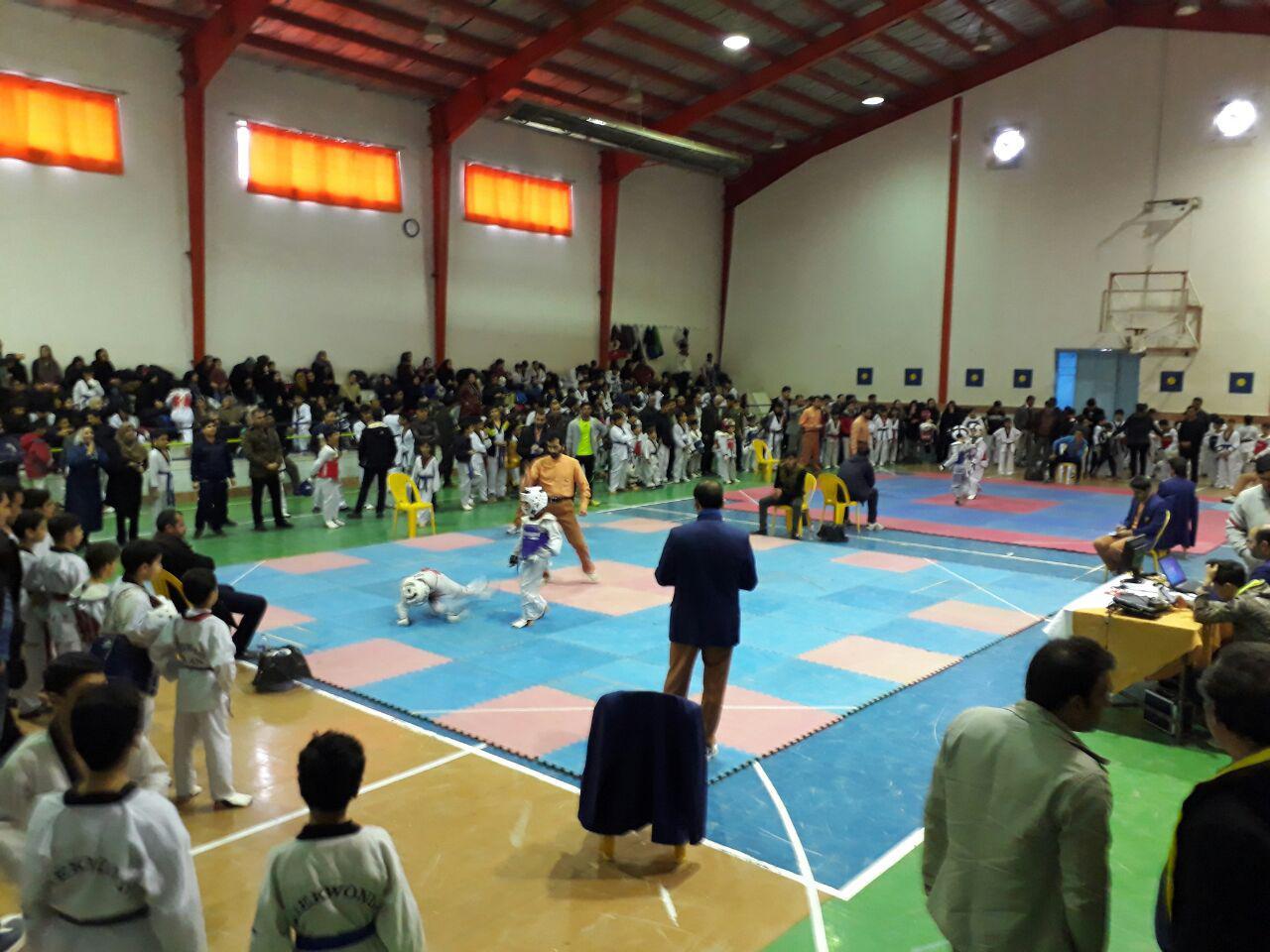 از برگزاری مسابقات تکواندو تا ادامه المپیاد ورزشی