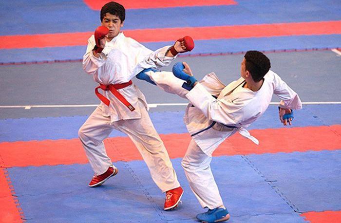 يك طلا و يك نقره دستاورد مازندراني ها در مسابقات سبك كيوكوشين ايچي گكي ماتسويي صربستان