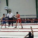 مسابقات بوکس زبدگان غرب مازندران در شیرودِ تنکابن