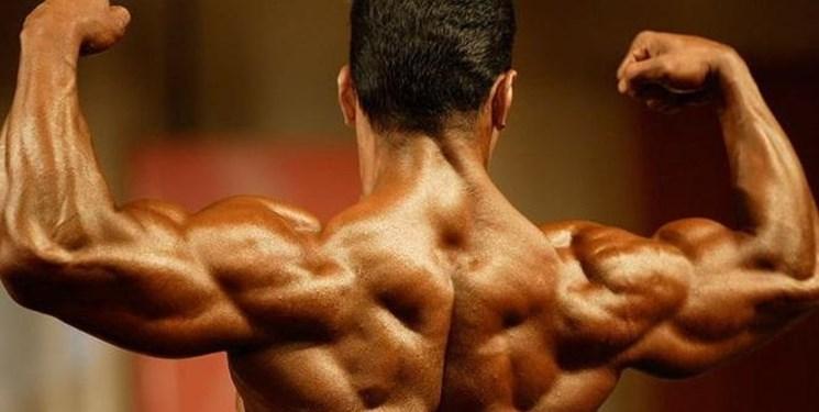 ورزشکاران پروش اندام و بدنسازی بیمه می شوند