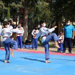 اولین دوره مسابقات مجازی قهرمانی آزاد هانمادانگ استان مازندران برگزار شد + عکس
